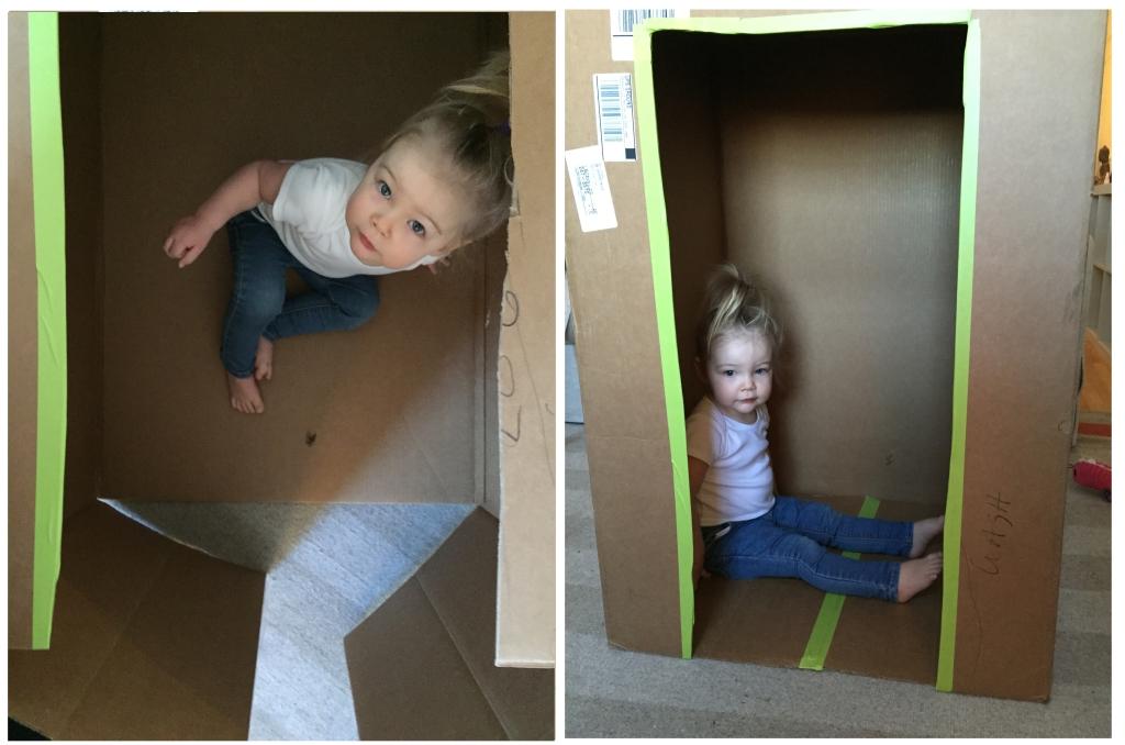 Two Cardboard House